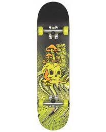 """Globe Skateboard G1 8,125"""" Nature Walk"""